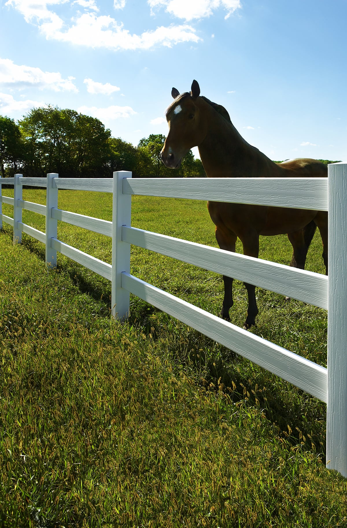 Bufftech Ranch 3 Rail Vinyl Fence Avo Fence Amp Supply