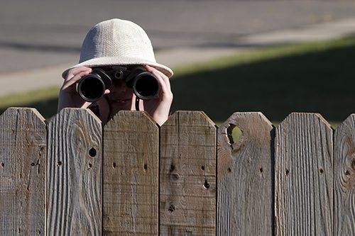Fence Binoculars Avo Fence Amp Supply